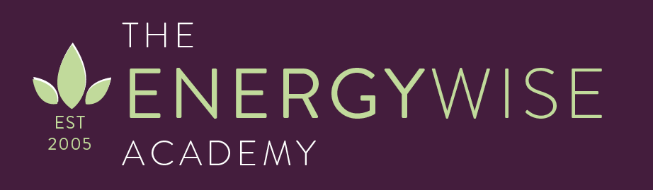 The EnergyWise Academy